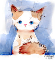 Kitty by Pierrick
