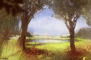 Land by Pierrick