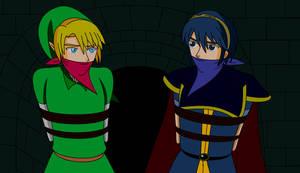 Link and Marth in HBND