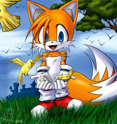 tails and birdies by tailschao