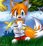 tails and birdies