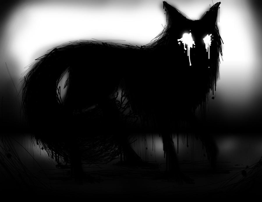 Shadow Fox Animal