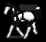 ID A4010 Foal Design