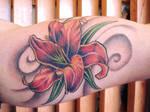 multicolor lily
