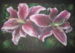Oil Pastels: Stargazer Lilies