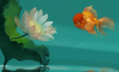 Float by TeaCi