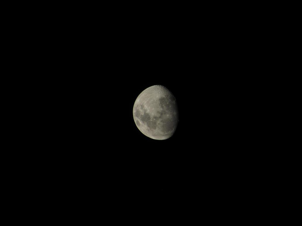 luna 11/11 by lestmind