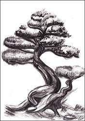 Bonsai by Eleithel