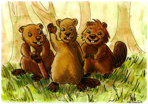 The clever beavers