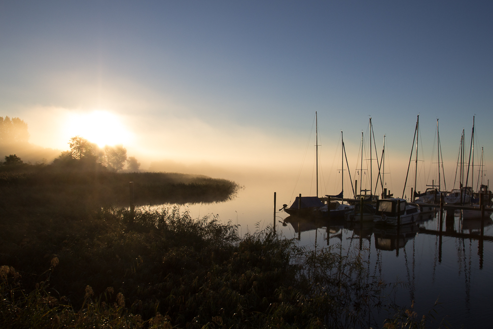 The Fog Is Lifting by pillendrehr