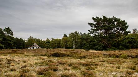 Hiddensee 4 by pillendrehr