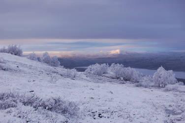 WinterWonderland02. by arxzero