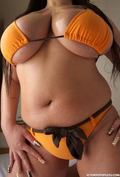 BBW Bikini 2