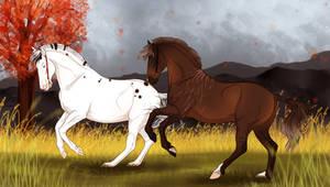 ~ Autumn Nordanners ~