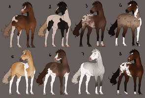 Fancy Horse Adoptables (2/8) Open *reduced