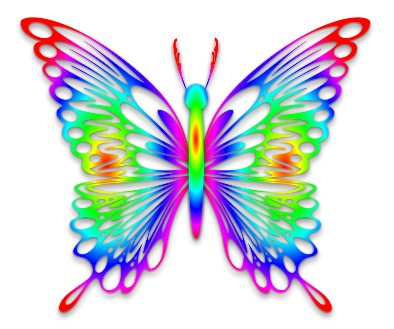 Rainbow Butterfly by GautamDas1992 on DeviantArt