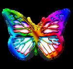 Colourfull Butterfly by GautamDas1992