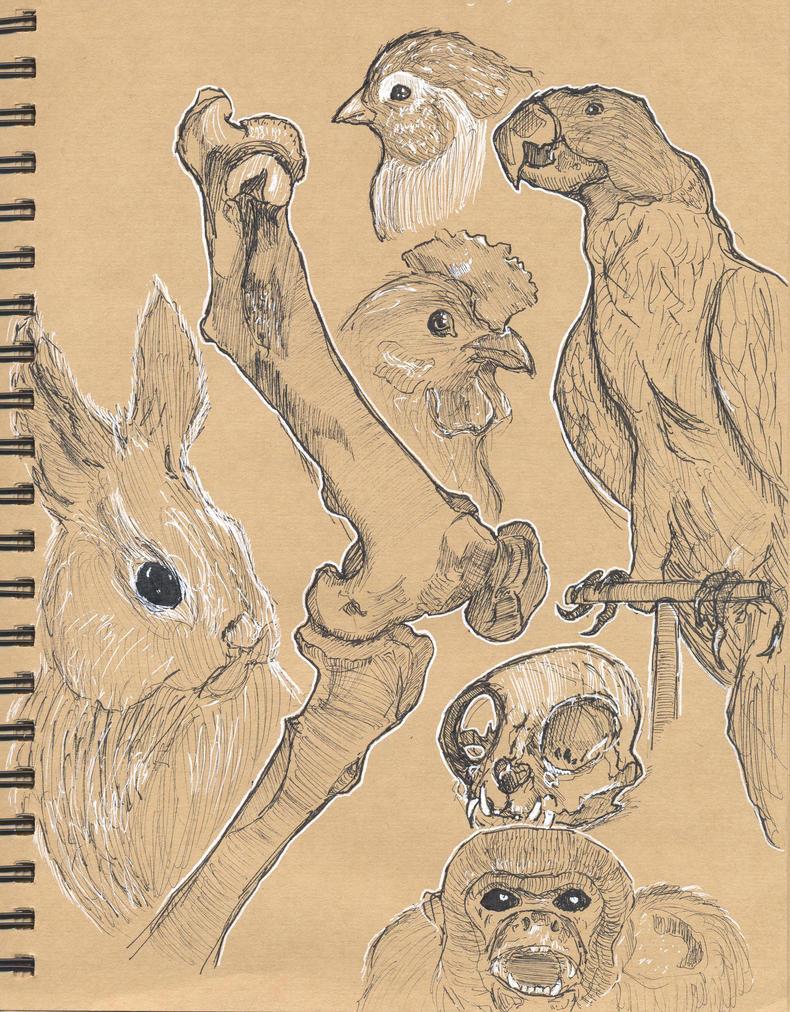 Biodome Studies by Whibbleton