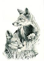 Fox Pair by Sparkmachine