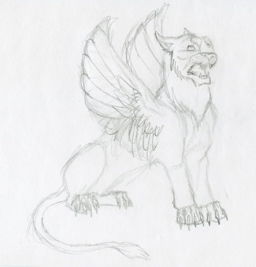 easy lion drawings in pencil - photo #34