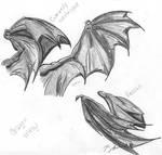 Dragon WIng Study