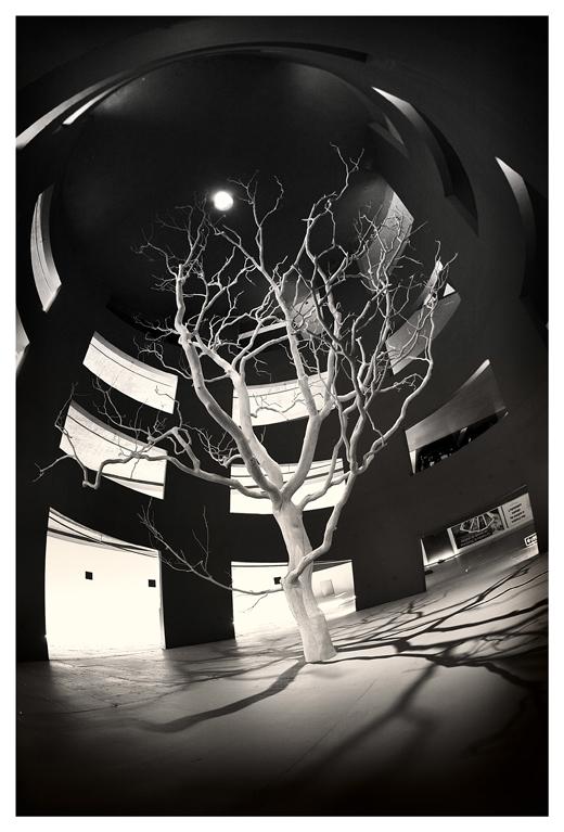 Moon Tree by paikan07