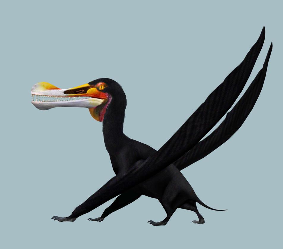 Ornithocheirus simus by PhilipEdwin