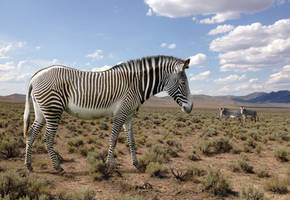 Hagerman Horse/ Equus simplicidens /American Zebra by PhilipEdwin
