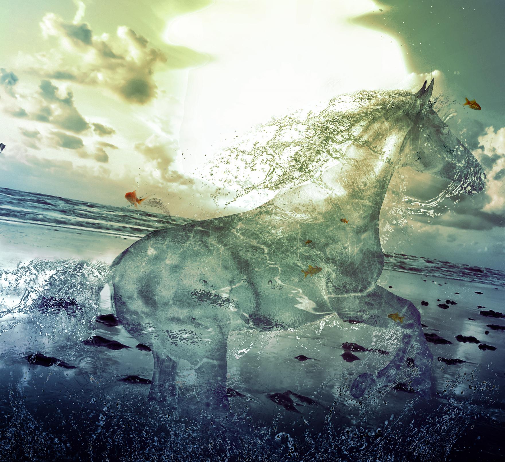 Water Stallion by PSHoudini
