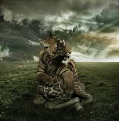 Peaceful Predator and Prey by PSHoudini