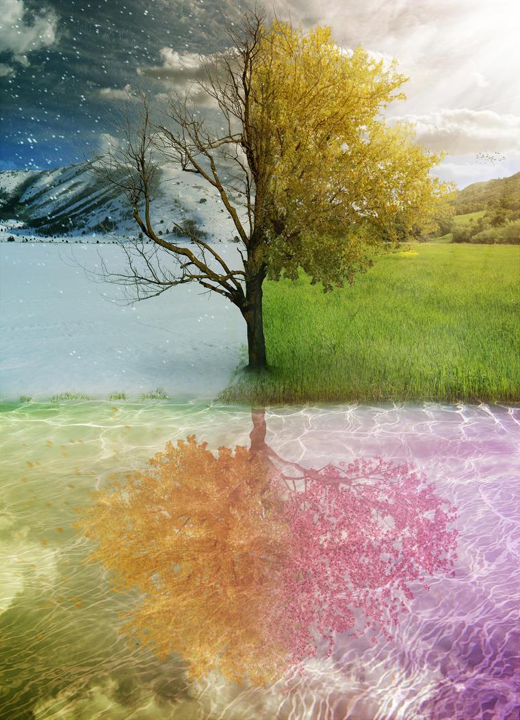 4 Seasons by PSHoudini ... - 4 Seasons By PSHoudini On DeviantArt