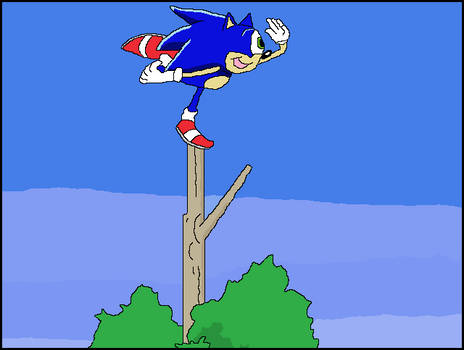 Sonic X Redraw: Sonic On Top Of A Tree