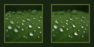 water drops stereoscopic