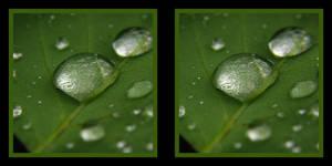 water drops 2 stereoscopic