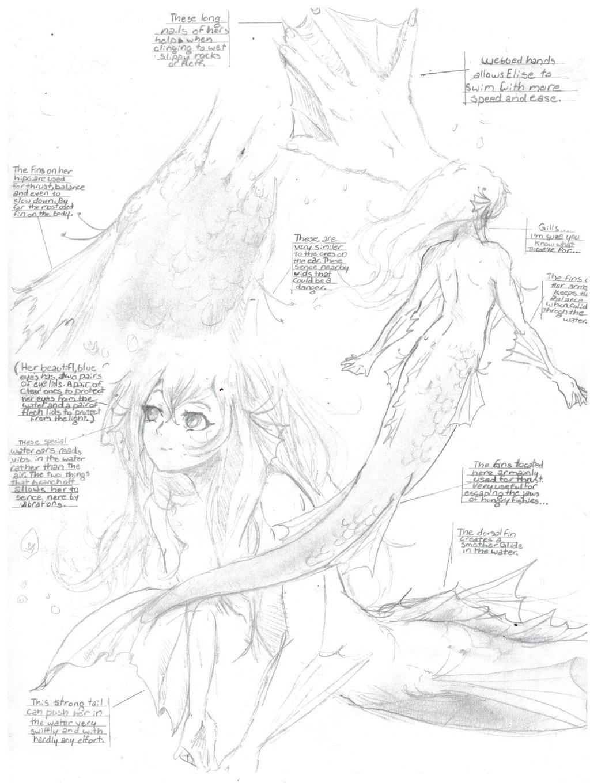 Elise the    Mermaid       Diagram     WingsOfFreedomAOT  by MichiruYami on DeviantArt