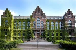 ~ My Dream University ~