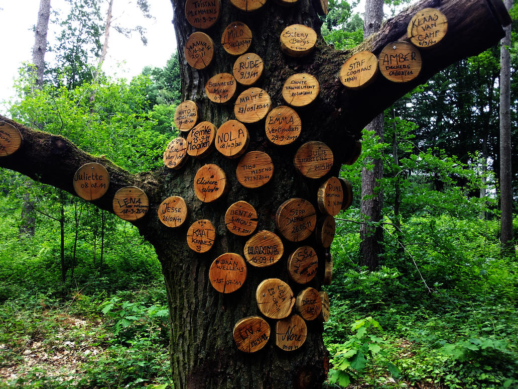 Names on a tree by Tibiacity
