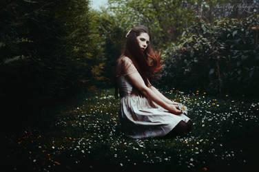 Daisy by anaispopy
