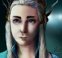 King of the Elves by squidlydes