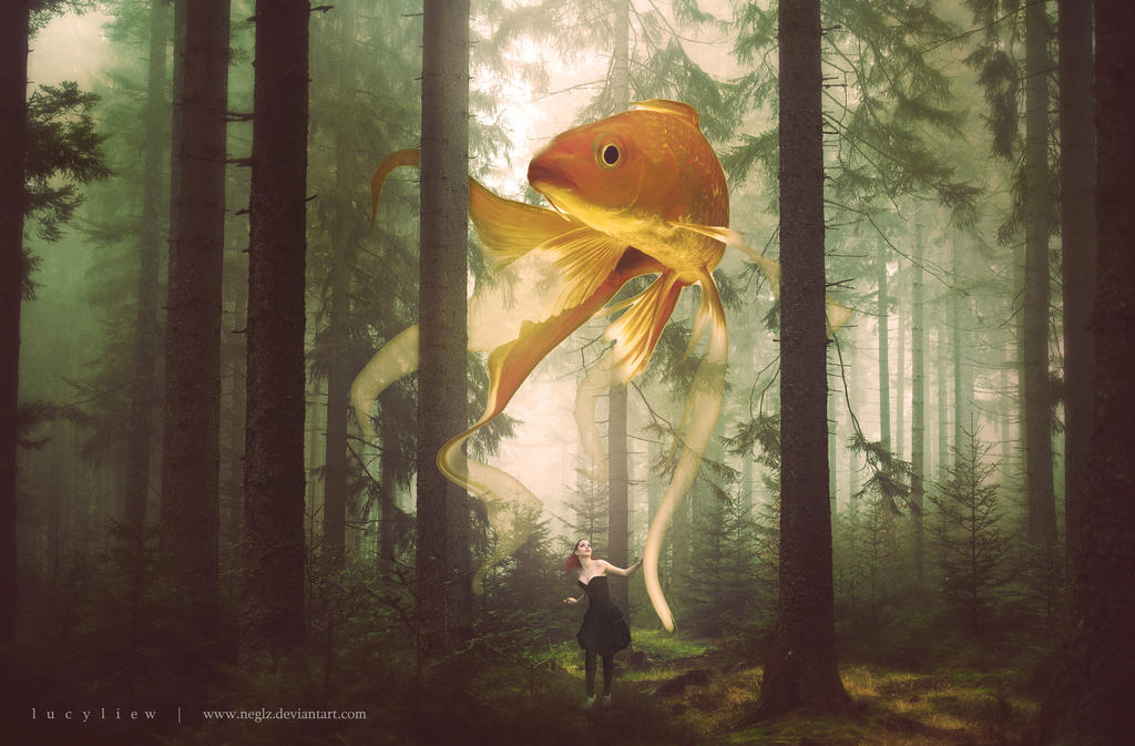 The Gold Fish by ngelz