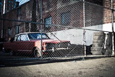 Backyard car