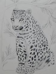 Leopard wip by BellaZarah