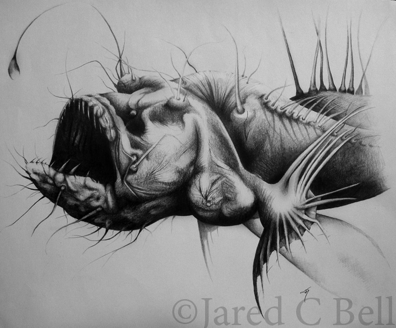 Hairy Angler Fish by J...