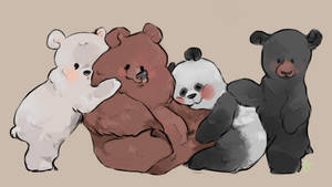 Baybe bears 2