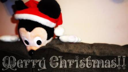 2014 Christmas Pic ID