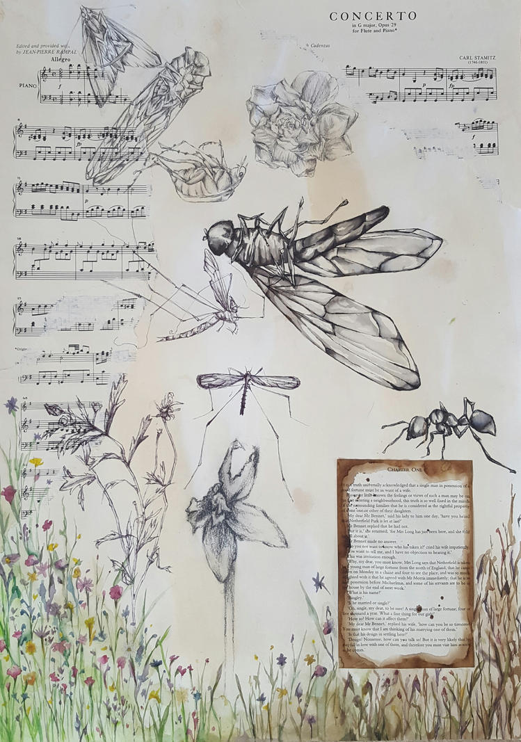 Insect and plant study 2 by fairyn