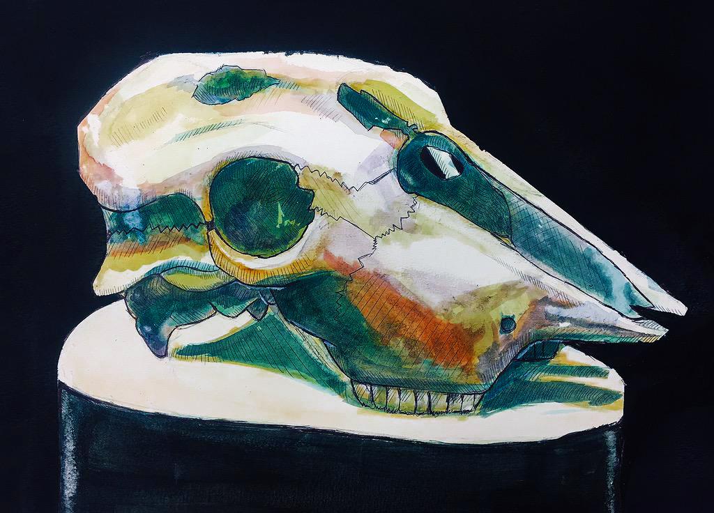 Watercolor Skull by jesseuhhyeah
