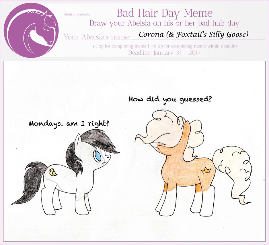 Bad Hair Day Meme by Gwenwhifar on DeviantArt