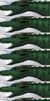 Dragon Skin Scales Alphas by LordOfDragons