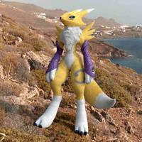 Renamon Cycles Fur by LordOfDragons